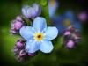 Scenic Photography & Photographs