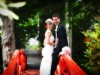Wedding Photographer & Wedding Photography